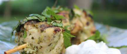 lime mint chicken kebab with tzatziki