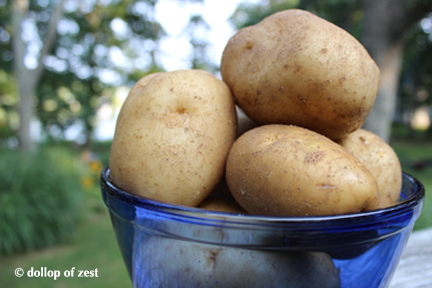potatoes for grilled potato salad